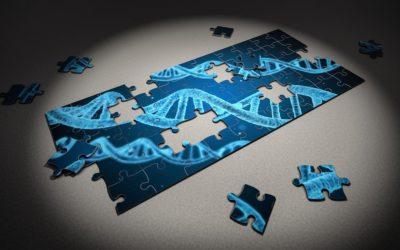 Comment utiliser les tests ADN pour la recherche généalogique